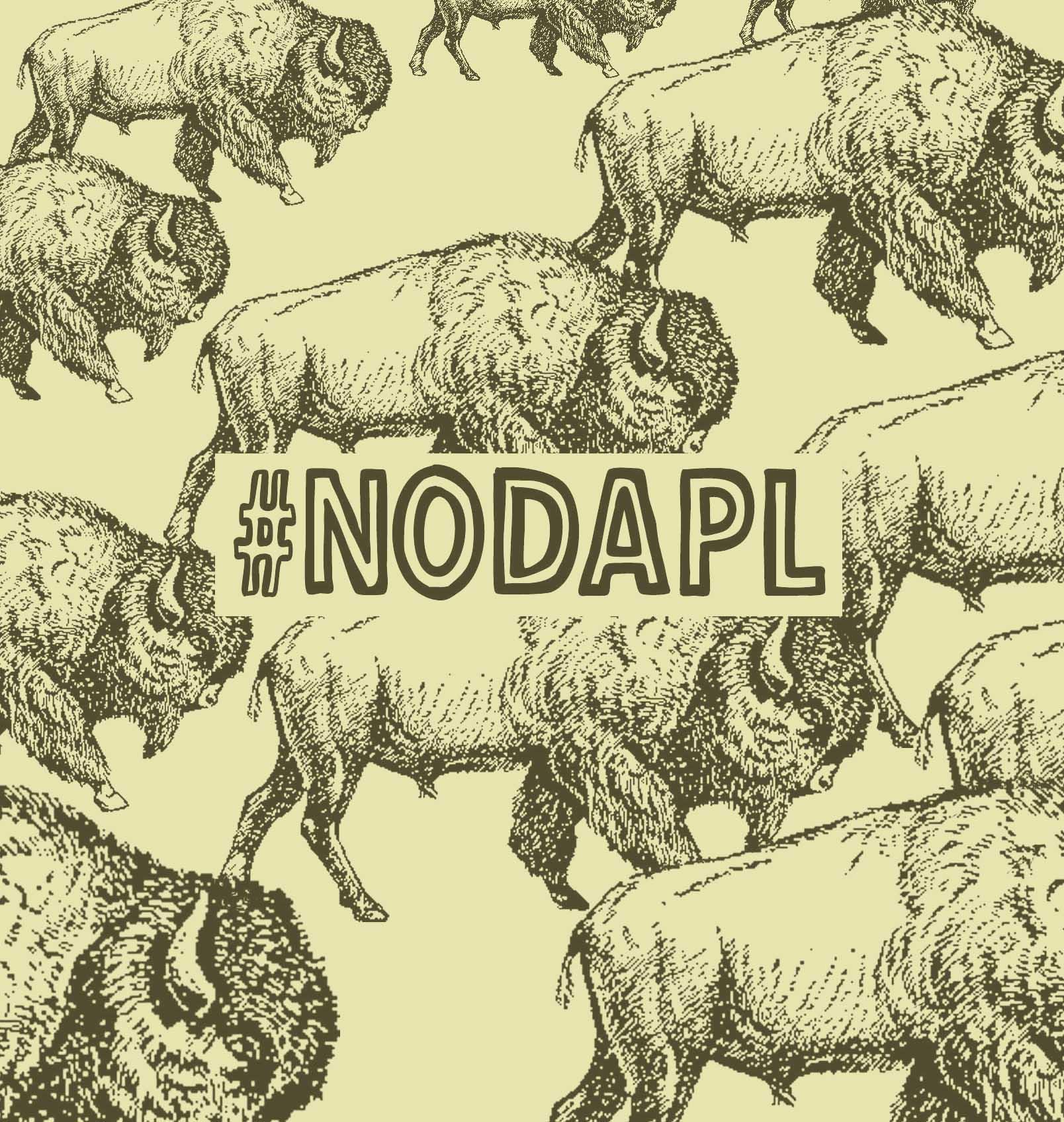 30a_nicolas-lampert_buffalo