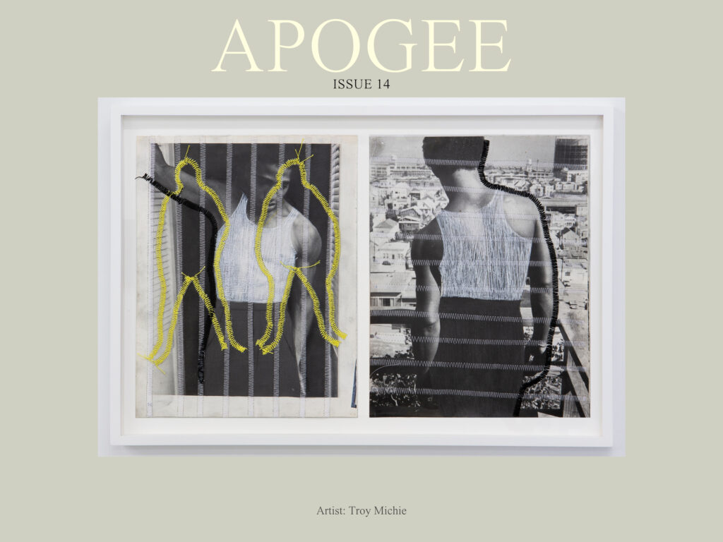 "Apogee Issue 14 image, featuring visual art by Troy Michie, ""America is Woven of Many Threads"""